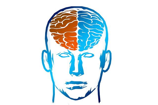anxiety brain hemispheres