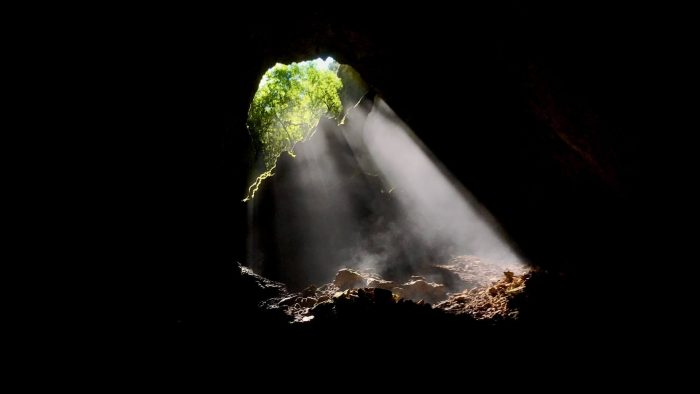 Life purpose: Life coming down into a dark underground ruins through a hole with forest on the outside