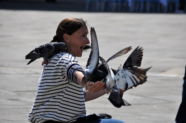 woman scared by birds